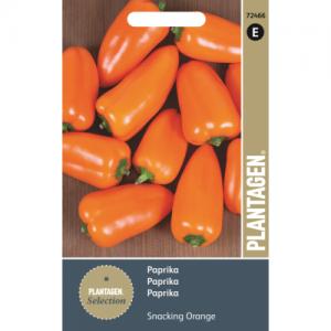 оранжевый сладкий перец
