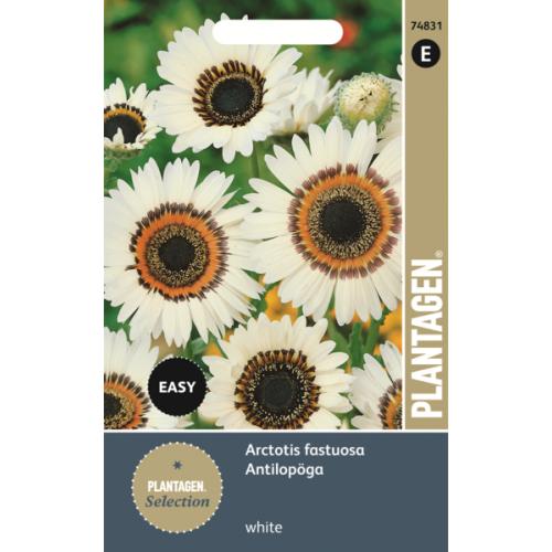 семена цветов из Финляндии