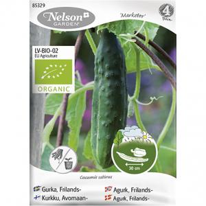 семена огурцов из Финляндии