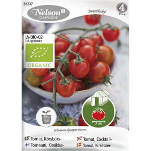 семена томатов черри